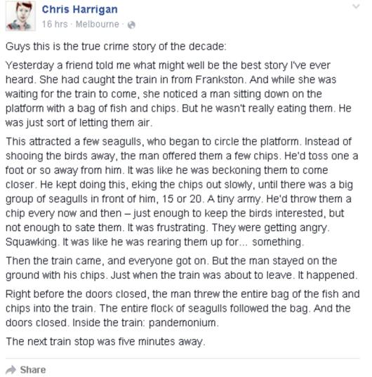 Frankstone Seagull story