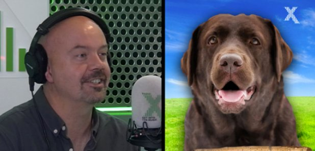 Dom and his Dog on the Chris Moyles show